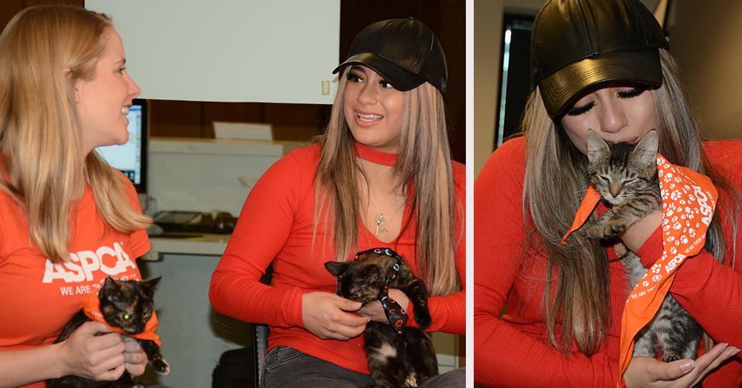 Left: Tina Reddington and Ally Brooke hold Maisy and Daisy. Right: Ally with Maisy.