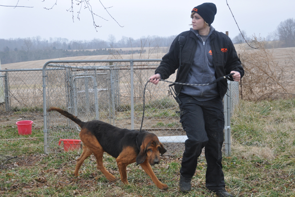 FIR responder walks bloodhound at puppy mill