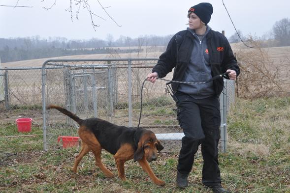 FIR responder walks bloodhound at puppy mill