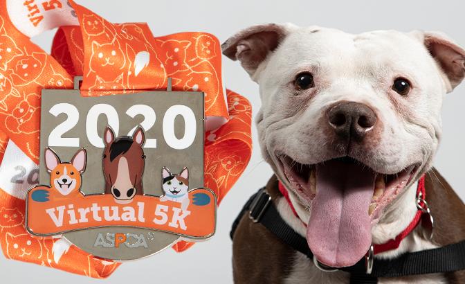 Virtual 5K