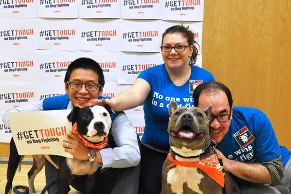 We're Celebrating National Dog Fighting Awareness Day—and You Can, Too!