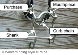A Western ring style curb bit